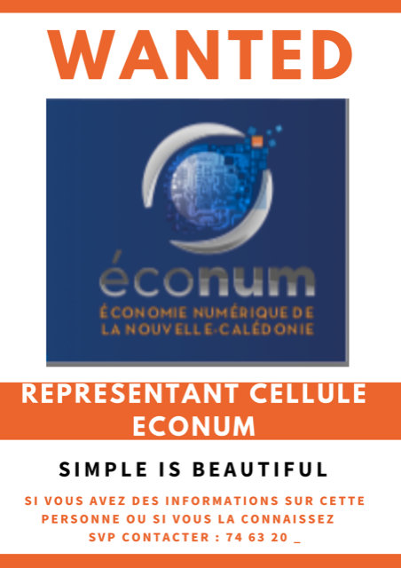 Simple Is Beautiful - Representant cellule Econum